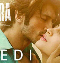 Bhedi Lyrics - Yaara