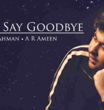 Never Say Goodbye Lyrics - Dil Bechara