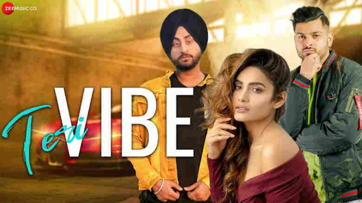 Teri Vibe Lyrics - Manveer Singh and Prince Robin